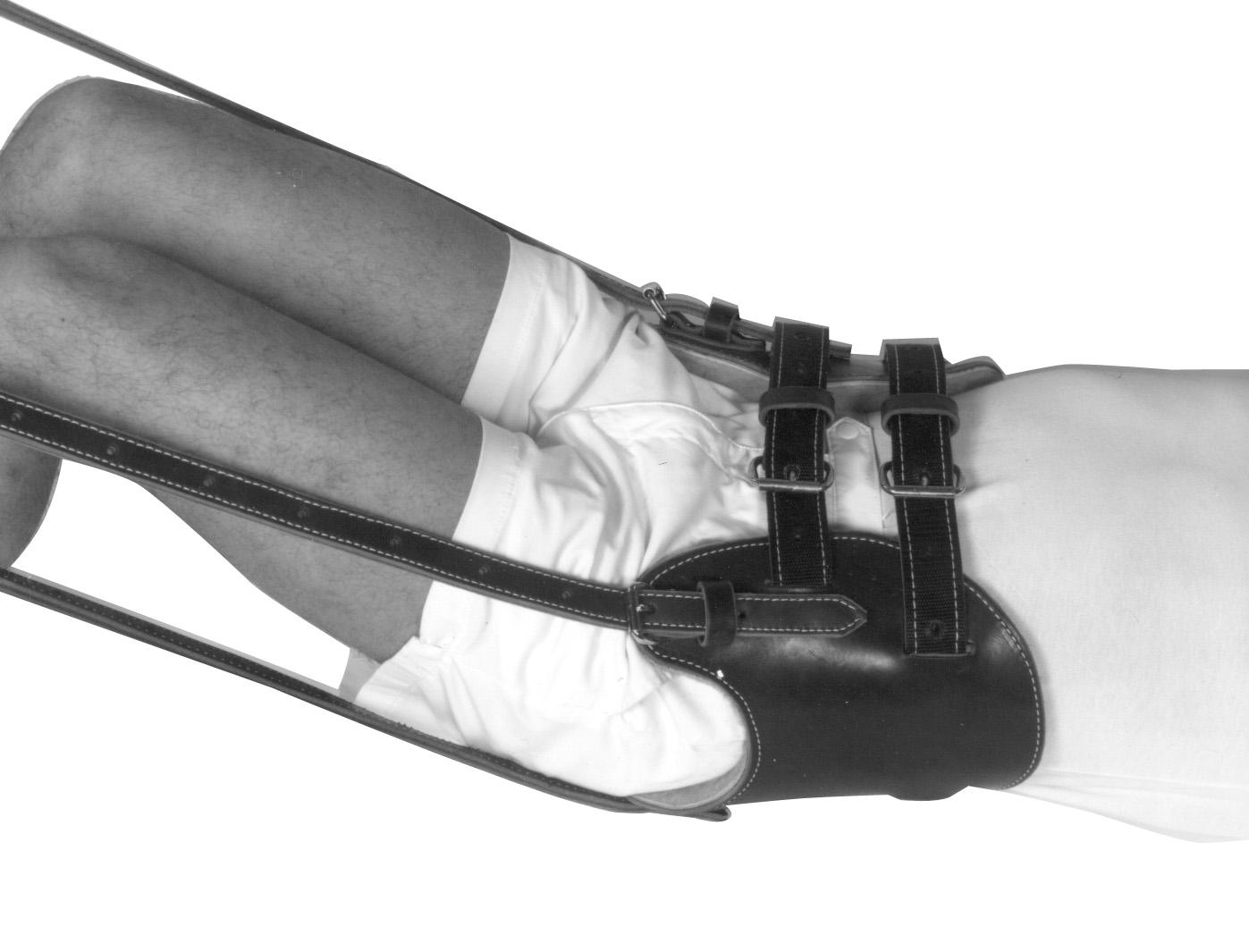 Morgan Lumbar Traction Harness | Professor Freddy ...